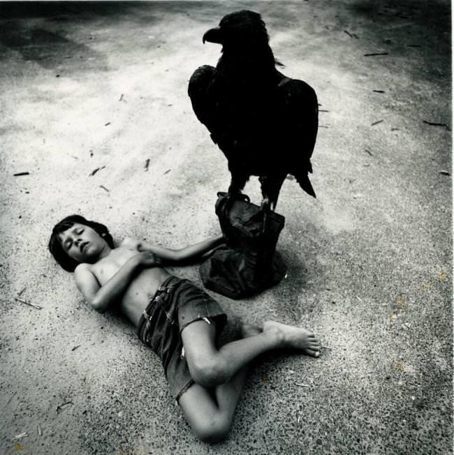 Ein riesiger schwarzer Rabe sitzt über einem Jungen.