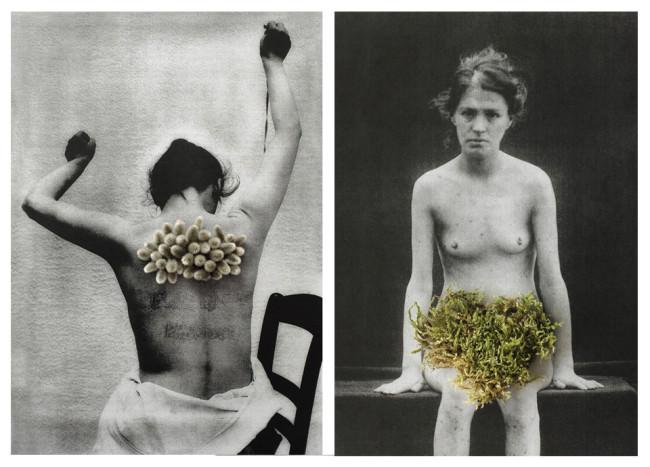 Zwei Bilder einer Frau, einmal von vorne und einmal von hinten.