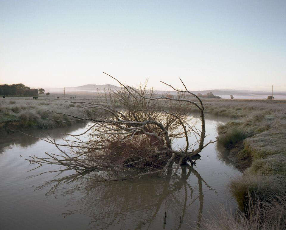 Ein abgebrochener Baum liegt in einem Fluss.