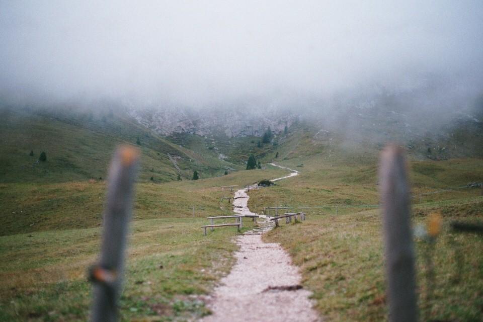 Holzpfähle entlang eines Wanderweges.