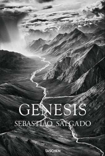 Buchcover: Genesis