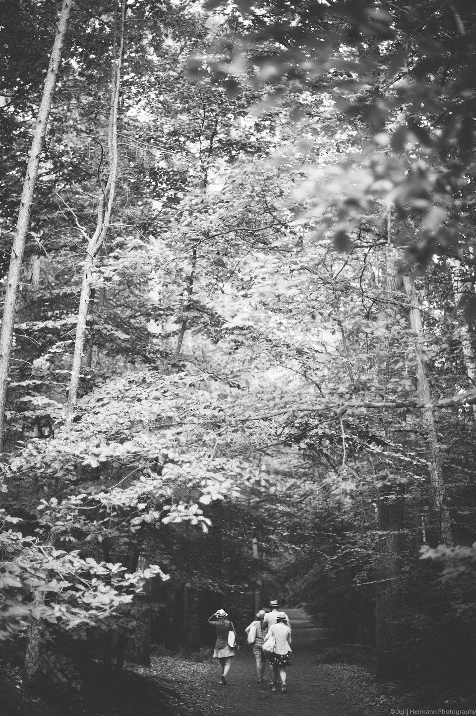 Vier Personen auf einem Waldweg.
