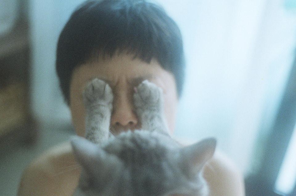 Zwei Katzen-Tatzen auf den Augen einer Frau.
