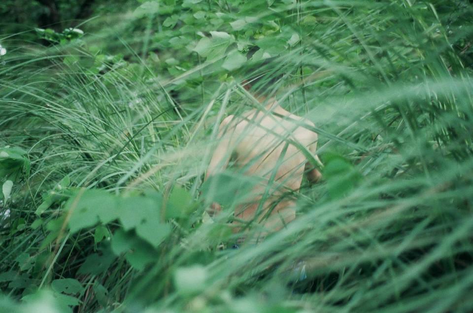 Eine Person ist durch Grashalme hindurch erkennbar.