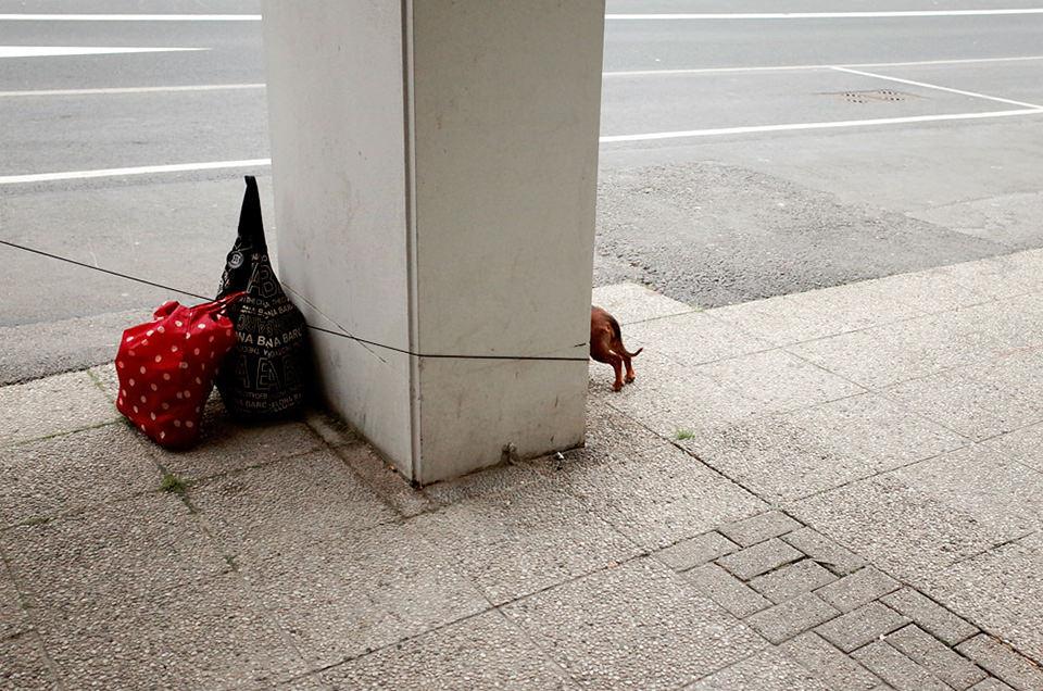 Wuppertal, 2014 © Max Slobodda