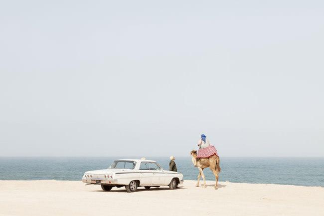 Ein Chevrolet und ein Kamel stehen an der Küste.
