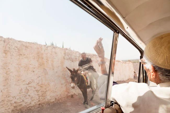 Ein Taxifahrer winkt aus dem Auto heraus einem Mann auf einem Esel zu.