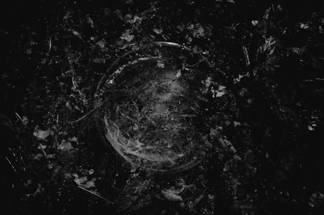 Abstrakte Naturaufnahme in Schwarzweiß