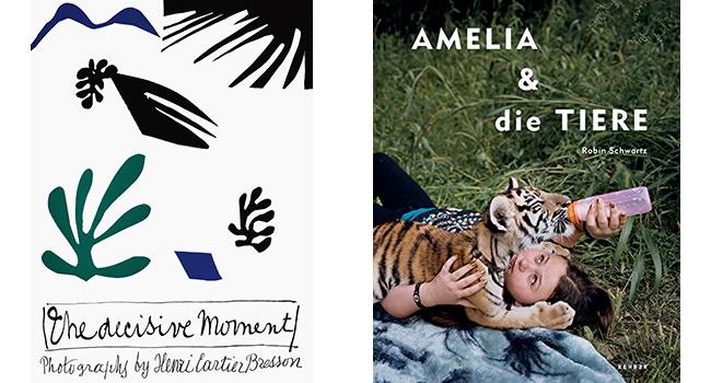 Amelia und die Tiere - Der entscheidende Augenblick