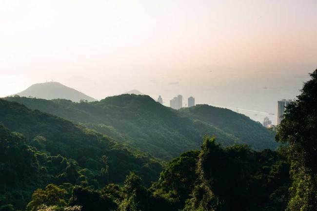 Ein Blick über grüne Hügel