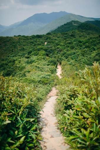 Ein Wanderweg durch die Natur