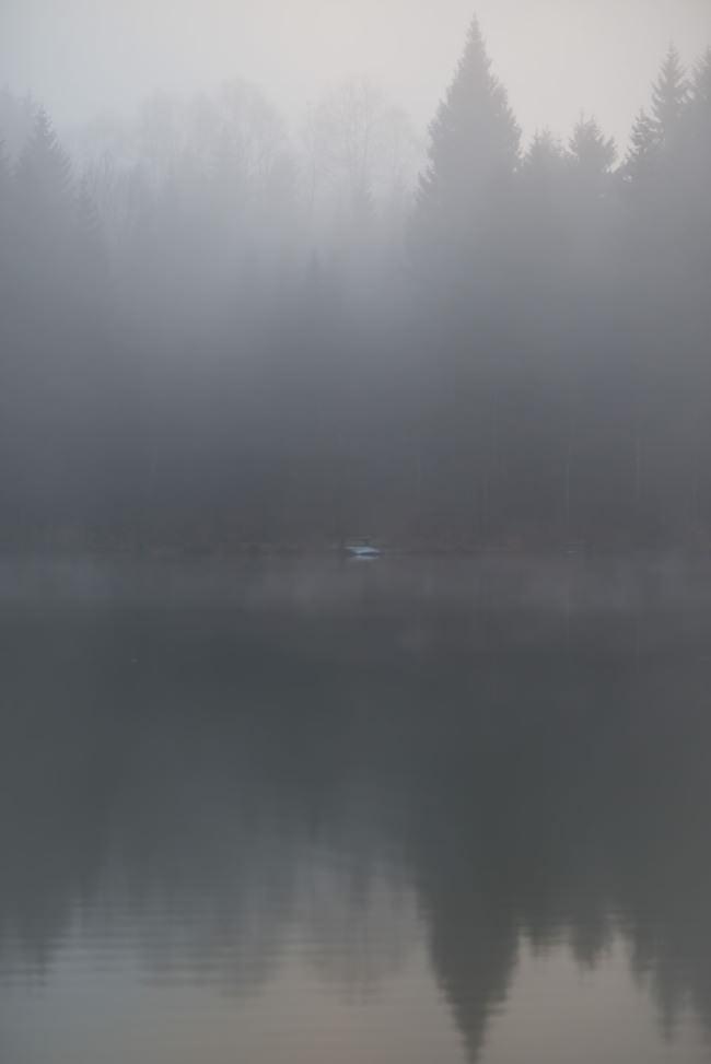 See im Nebel.