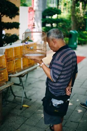Ein Mann auf dem Markt