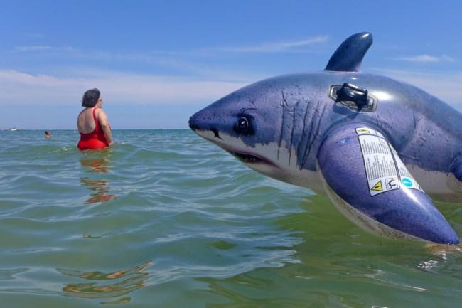 Ein aufblasbarer Hai im Wasser.