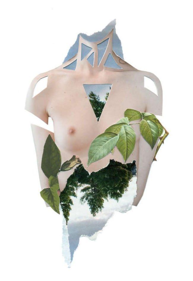 Collage aus einem nackten weiblichen Oberkörper und Blättern.