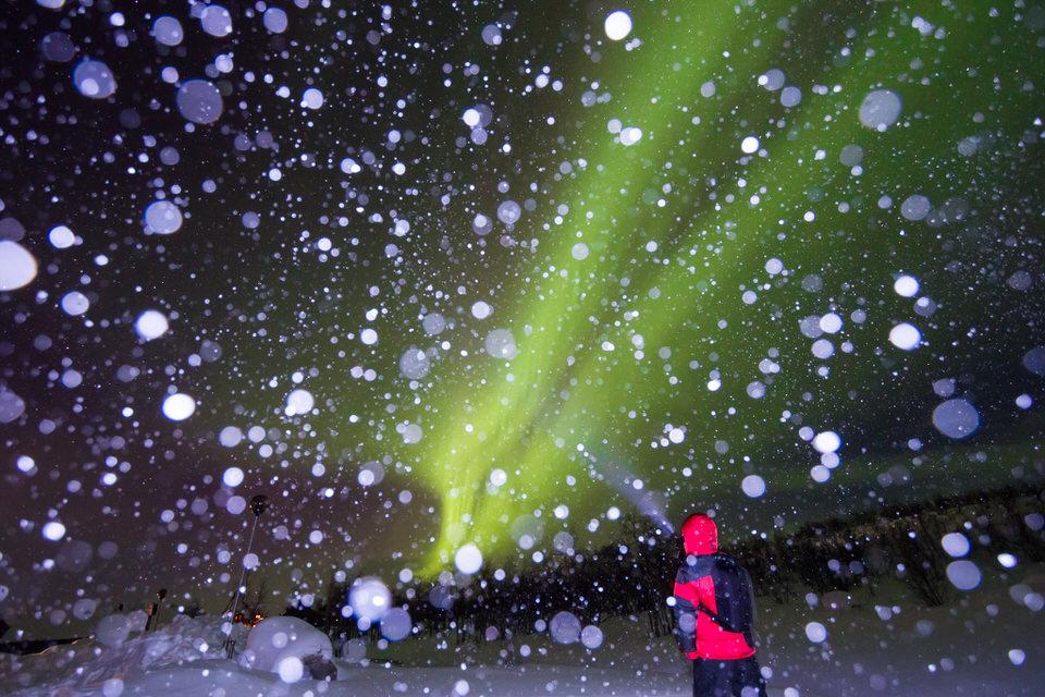 Angeblitzte Schneeflocken vor Polarlichtern.