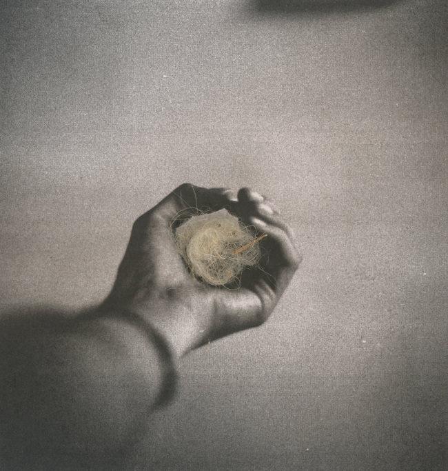 Schwarzweißfoto eines Hand in die Wolle gecannt wurde.