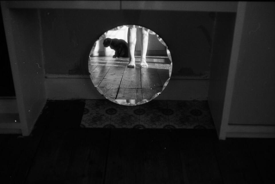 Eine Katze und nackte Beine spiegeln sich.