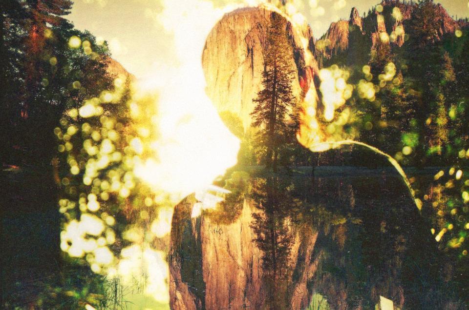 Ein Mann im güldenen Licht und Bäume.
