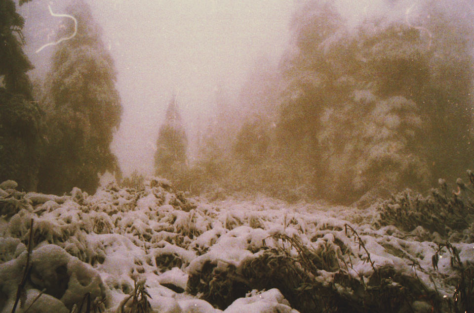 Eine Schneelandschaft und grauer Himmel.