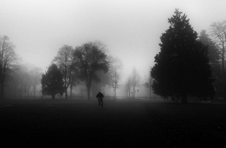 Ein Radfahrer fährt durch einen nebeligen Wald.