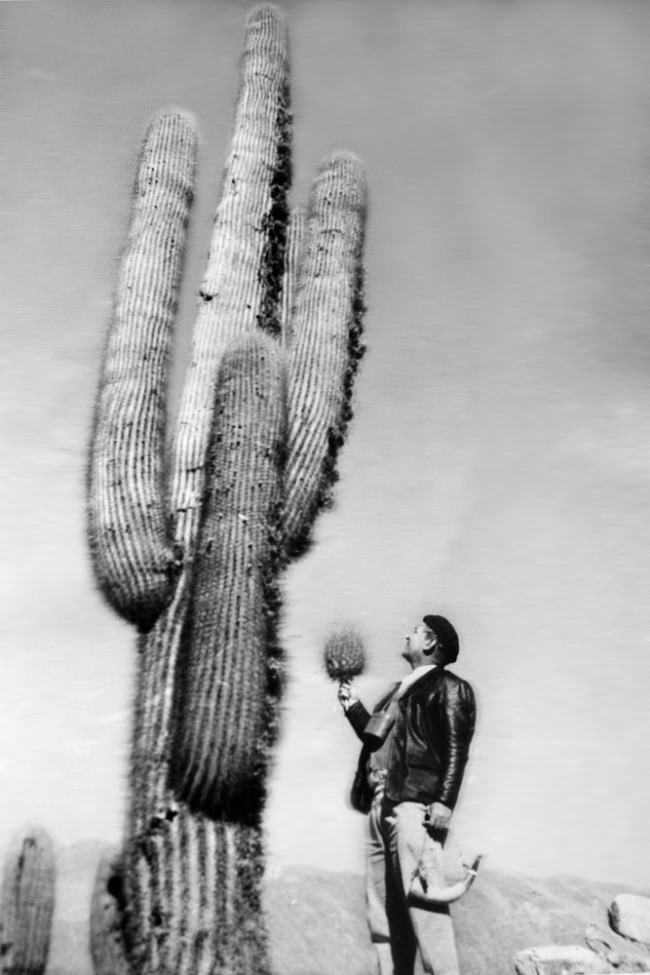 Ein Mann steht vor einem Kaktus