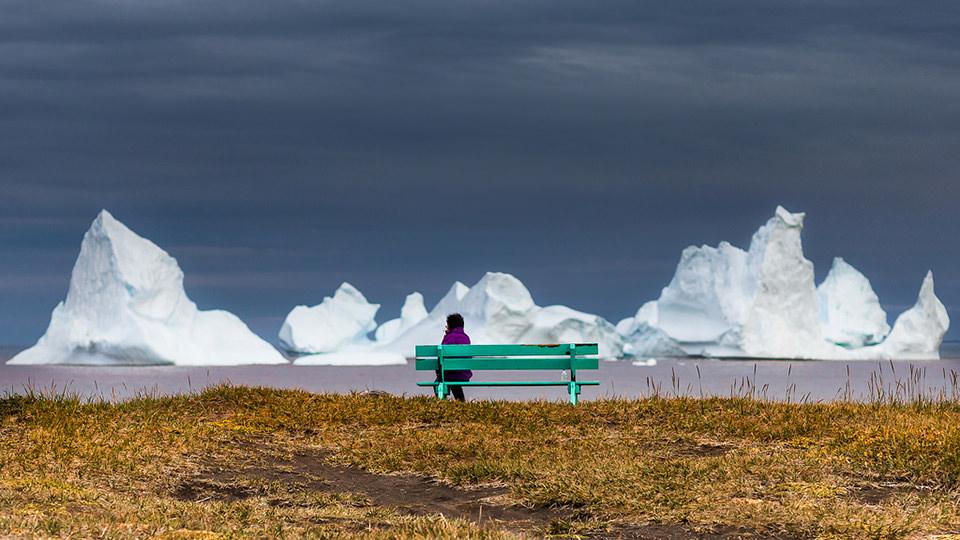 Ausblick auf Eisberge