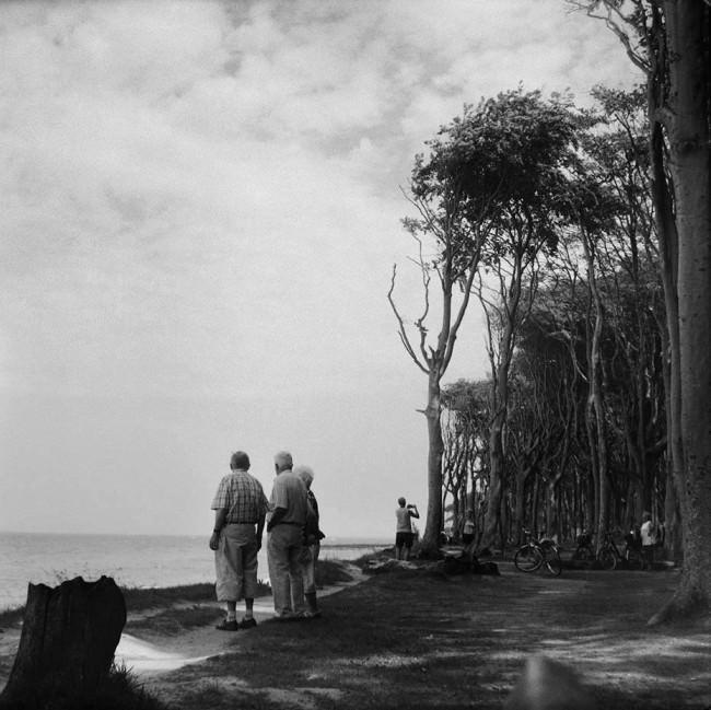 Einige Personen an der Küste zum offenen Meer, an der ein Wald beginnt.