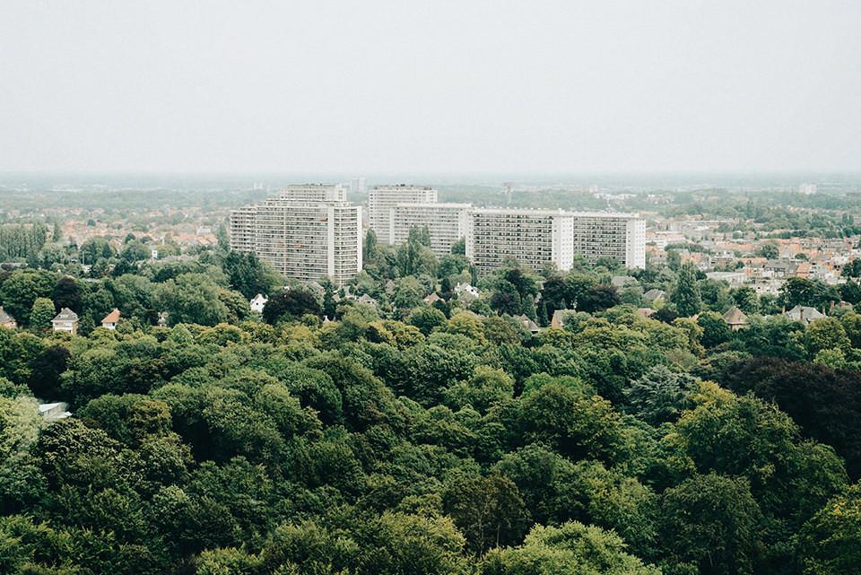 Blick auf eine große Wohnsiedlung zwischen Bäumen.