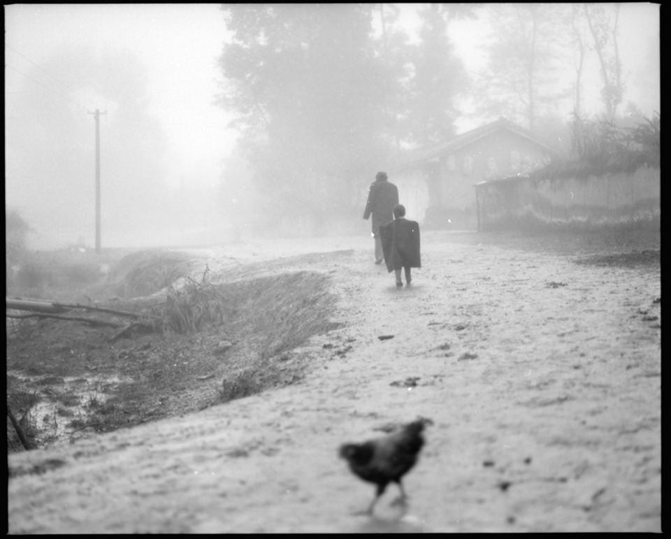 Ein Huhn im Vordergrund, im Hintergrund laufen zwei Menschen.
