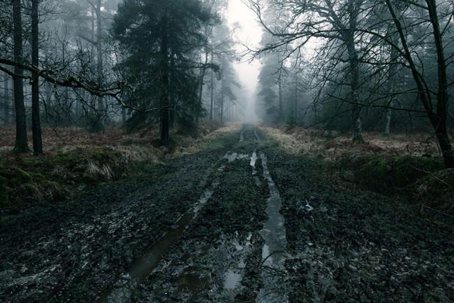 Schlammiger Waldpfad