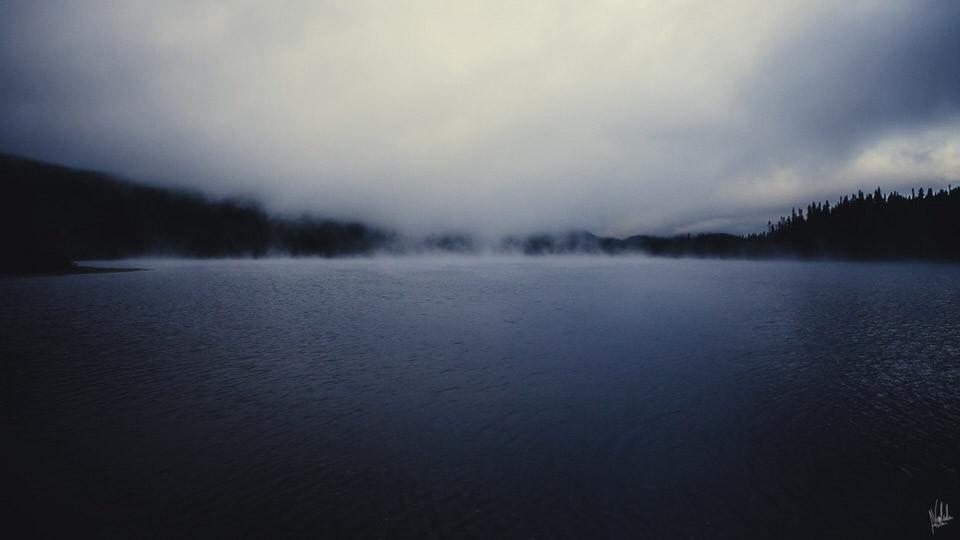 Nebel über dem See.