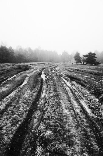 Panzerspuren in frostigem Boden