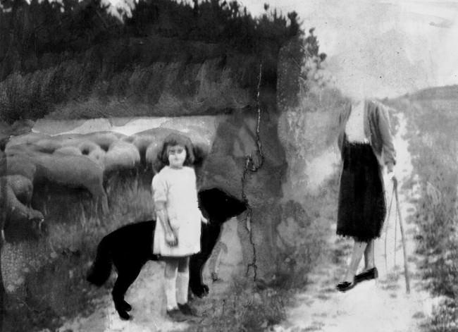 Eine Collage, ein Mädchen mit einem Hund und eine alte Frau.