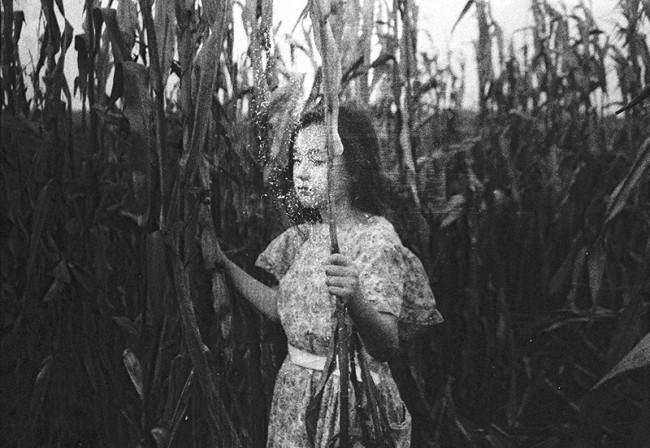 Ein Mädchen steht in einem Maisfehld und schließt die Augen.