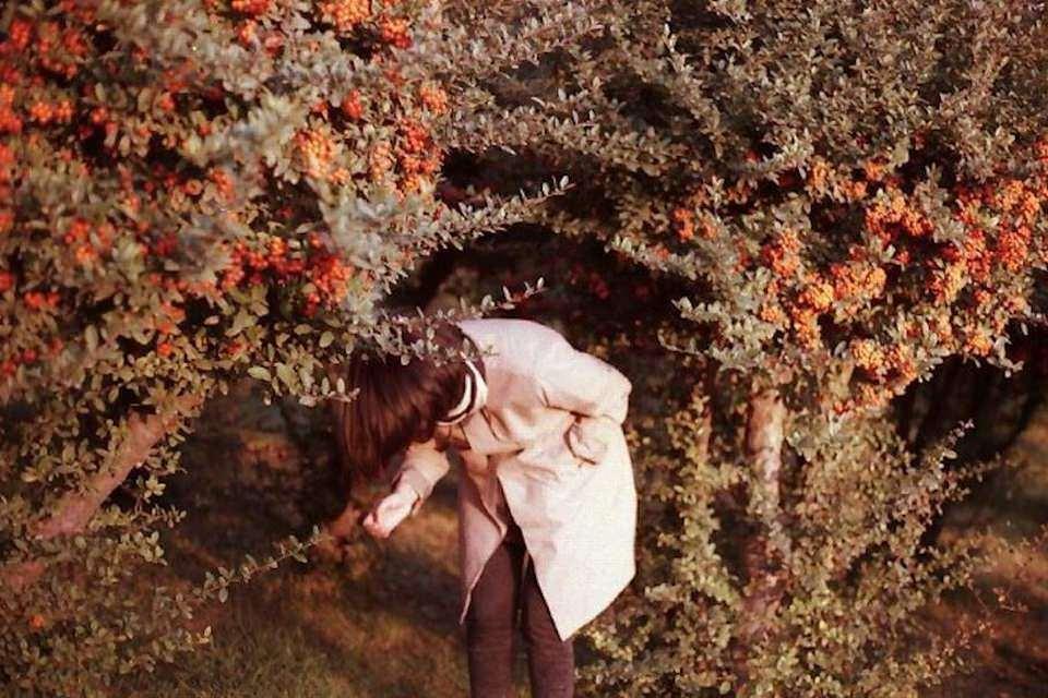 Frau unter Büschen mit roten Beeren.