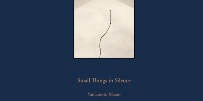 Cover des Buchtitels