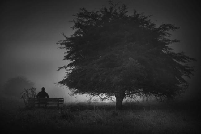 Ein Mann sitzt auf einer Bank, welche neben einem Baum steht.