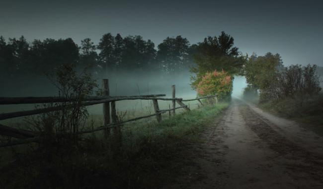 Ein Weg an Feld und Wiesen vorbei.