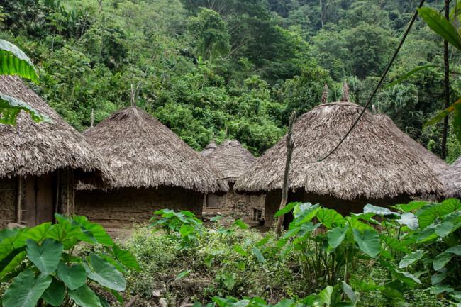 Hütten von Eingeborenen im Urwald.