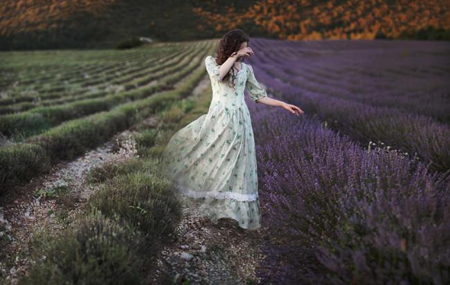 Eine Frau verschwindet zwischen blühendem und abgeernteten Lavendelfeldern.