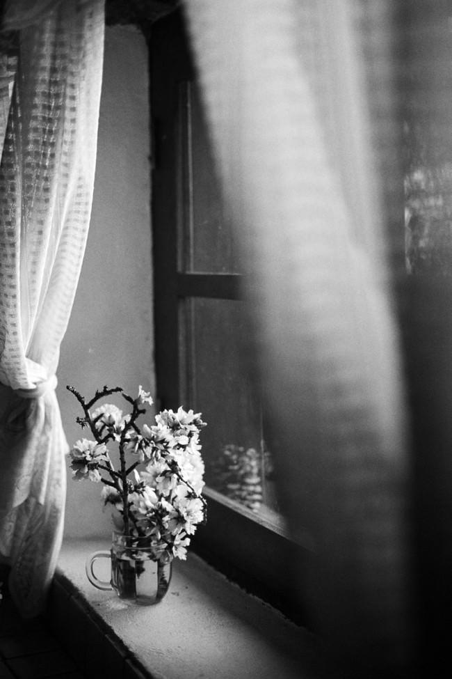 Eine Vase am Fenster.