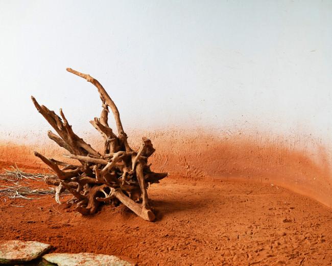 Nachbildung einer Wüstenumgebung