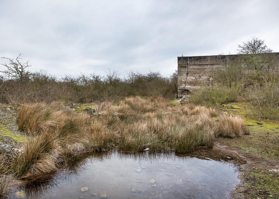 Ein sumpfiger See mit einer Ruine im Hintergrund.