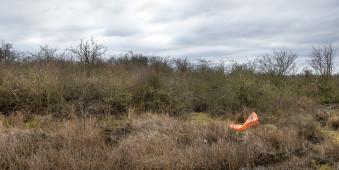Eine orangene Mülltüte weht durch eine grasige Landschaft.