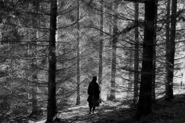 Eine Frau steht im Wald und schaut zu den Bäumen im schönsten Licht der Welt.