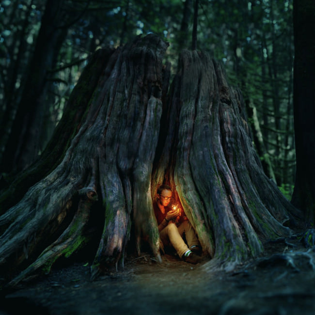 Ein Mann sitzt in einer Baumwurzel mit einem leuchtenden kleinen Wesen.