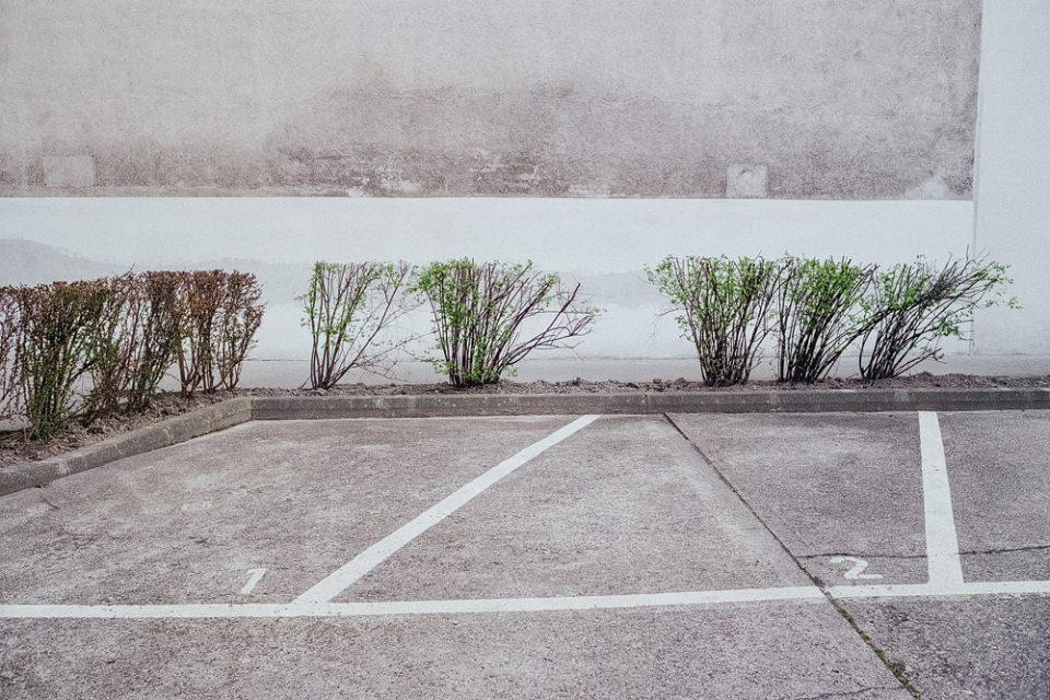 Gestutzte Hecke neben Parkplätzen vor einer halbhoch weiß gestrichenen Wand.