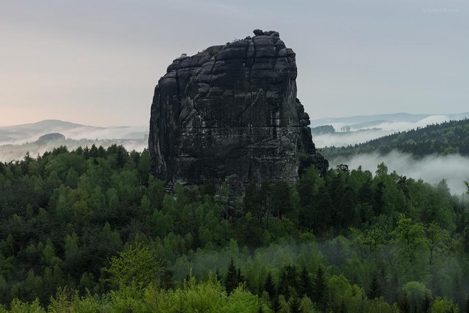 Felsen ragt aus Wald heraus