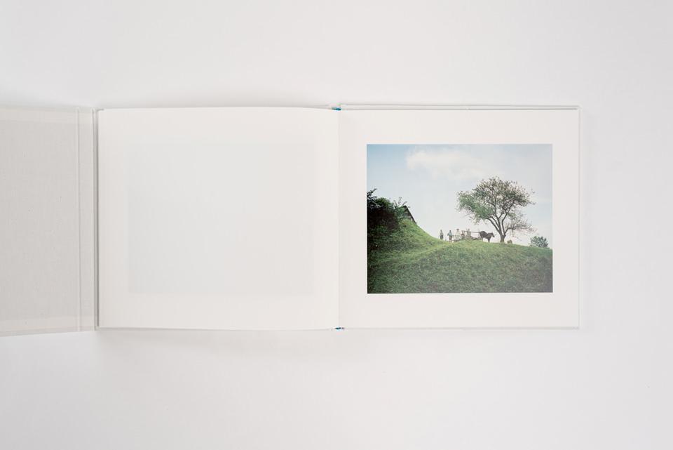 Ein Buch und ein Bild und ein Baum.